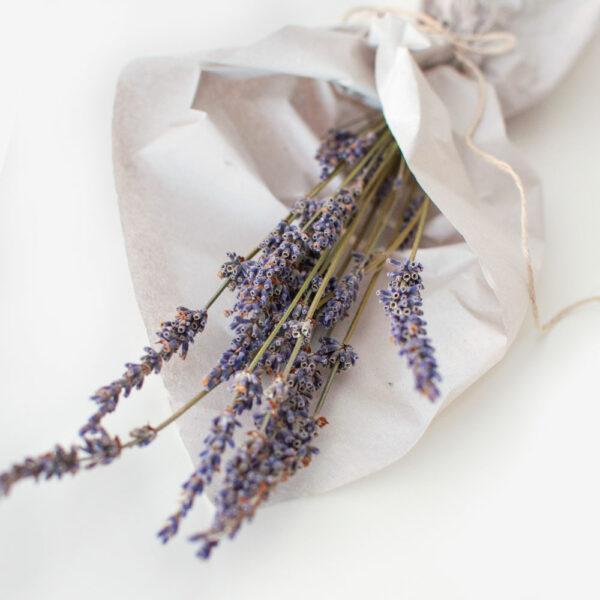 Trockenblumen Bund Lavendel